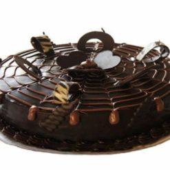 3343727798chocolate_pride_cake