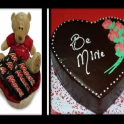 4017845011Teddy_and_Cake