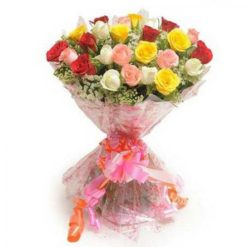805315multi_color_roses