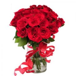 811160red_roses_with_vase
