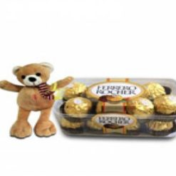 8358769327teddy_with_chocolates__899