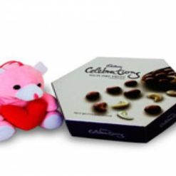 8387894814Cadbury_Rich_dryfruits_with_6inch_teddy_bear_f_699