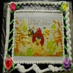 887917angry_bird_truffle_cake