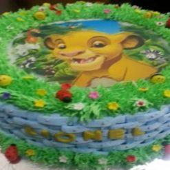 8916967143photo_cake