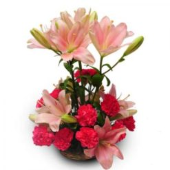 987758lilies_and_carnations